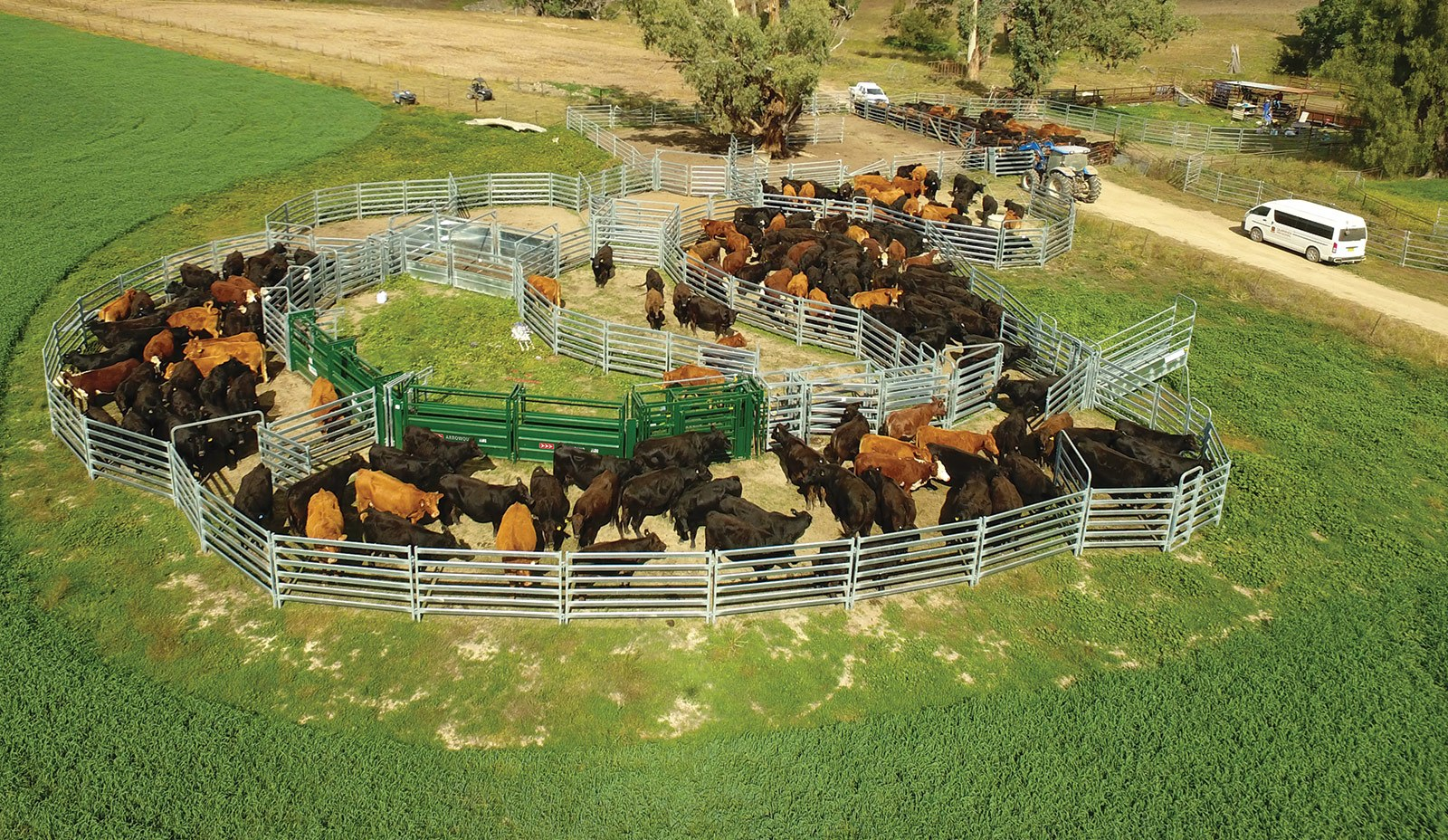 Large Cattle Yard Designs: Financing Available For All Sized Cattle